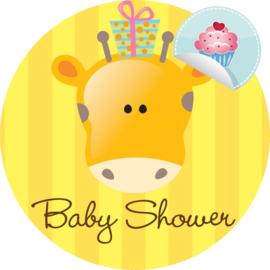 Babyshower 1 CC
