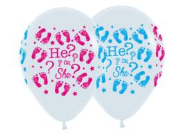 He or She? (5 stuks)