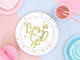 Boy or Girl bordjes