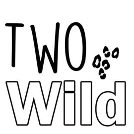 Strijkapplicatie: Two wild