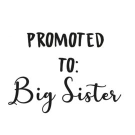 Strijkapplicatie: Promoted to Big Sister