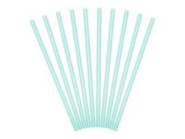 Sky blue papieren rietjes (10 st)