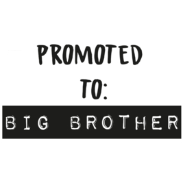 Strijkapplicatie: Promoted to Big Brother