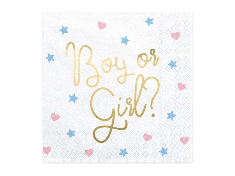Boy or Girl Servet