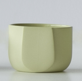 Tea/Cappuccino | Yellow/Green