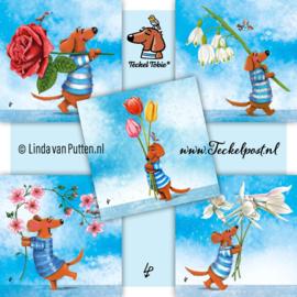 Teckel Tobie SET 6 - Bloemen - 5 Gevouwen kaarten