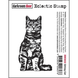 Sitting Cat - Darkroom Door