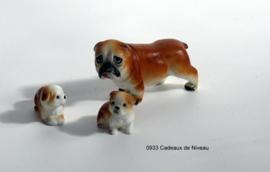 Rashond met pups per stel 6 x 3,5 (groot)