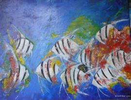 """Olieverf op linnen 50 x 40 """"Vissen in gevecht"""""""
