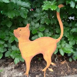 Kat met hoge rug op steker roestijzer