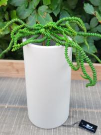 Bob Two in one t -light vase (mole / inside black)