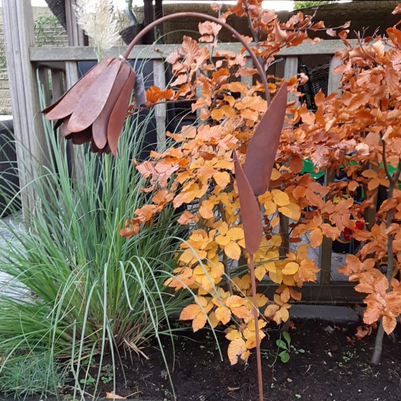 Tuinsteker Bloemkelk 3D gebogen op steel roestijzer
