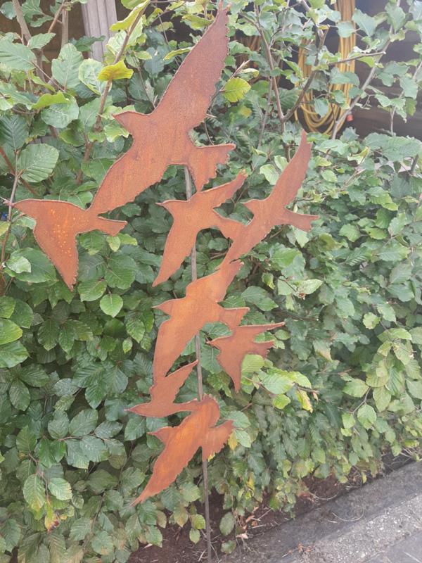 Tuinsteker vogelzwerm roestijzer