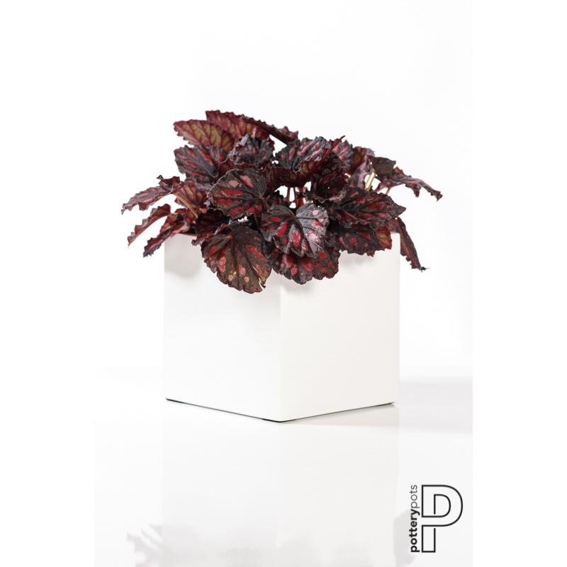 Pottery Pots Fiberstone Fleur L