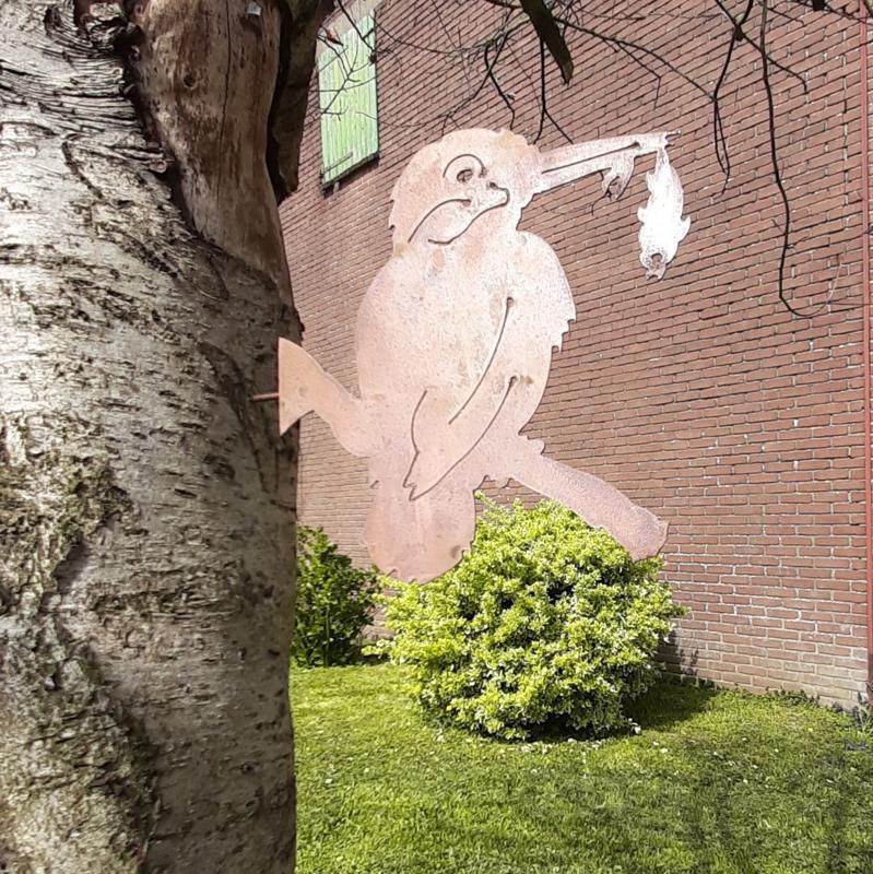 Schroefijsvogel roestijzer