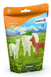Alpaca familie 42544
