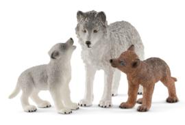 loup maman avec louvetaux 42472