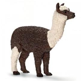 alpaca merrie 13704 zzz