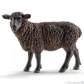 schaap zwart 13785 -