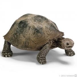 reuze schildpad 14601 -