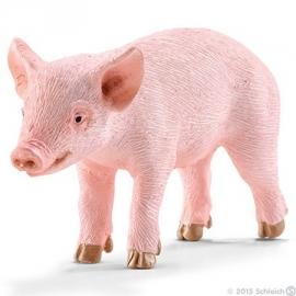 varken big staand 13783 -