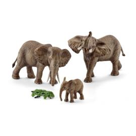olifantenfamilie Afrikaans 42337