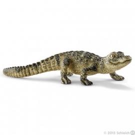 alligator jong 14728 -