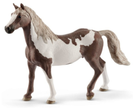 paint horse hongre 13885