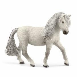 Ijslandse pony merrie 13942