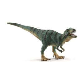 Tyrannosaurus Rex jong 15007 18
