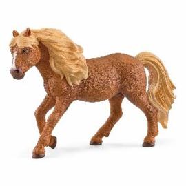 Ijslandse pony hengst 13943