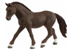Duitse rij pony ruin 13926