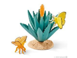 agave met vlinders 42252