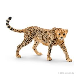 cheetah wijfje 14746
