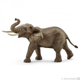 Afrikaanse olifant stier 14762 -