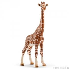 giraf koe 14750 -