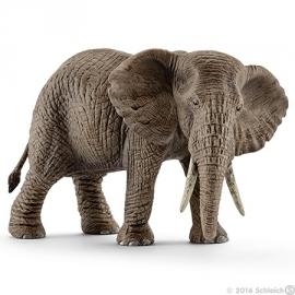 Afrikaanse olifant koe 14761 -