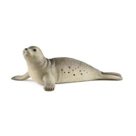 zeehond 14801 18