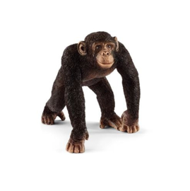 chimpanzé male 14817 18