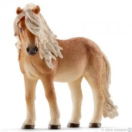 ijslandse pony merrie 13790 *