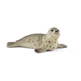 jonge zeehond 14802 18