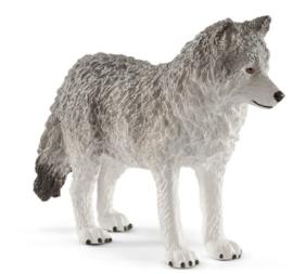 wolvin met welpen 42472