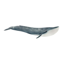 blauwe walvis 14806 18