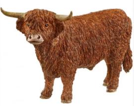 Highland stier 13919