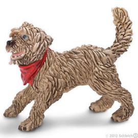 straathond 16818