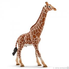 giraf stier 14749 -