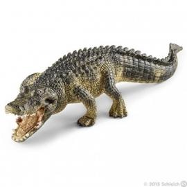 alligator 14727 -