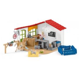 cabinet véterinaire avec animaux 42502