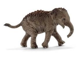 Aziatische olifant kalf 14755