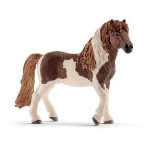 ijslandse pony hengst 13815 *